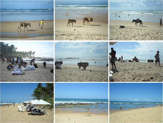 Praia da Oca